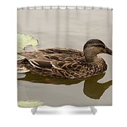 Duck Reflecting Shower Curtain