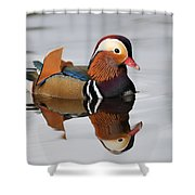 Duck Reflection Shower Curtain