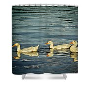 Duck Reflections Shower Curtain
