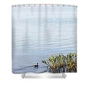 Duck Swimming In Lake Shower Curtain