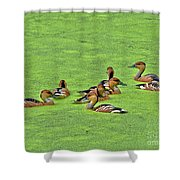 Duck Weed Club Shower Curtain