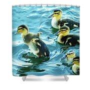 Ducklings Digital Water Color Shower Curtain