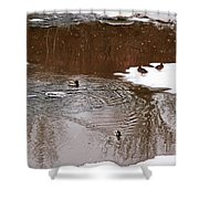 Ducks 2 Shower Curtain