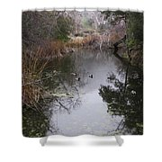 Ducks From The Bridge Shower Curtain