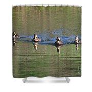 Ducks In A Row Shower Curtain