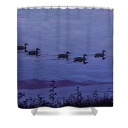 Ducks In A Row - Swimming In The Clouds Shower Curtain