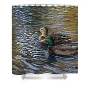 Ducks In The Pond Shower Curtain