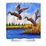 Ducks Landing In A Marsh Shower Curtain