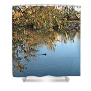 Ducks On Peaceful Autumn Pond Shower Curtain