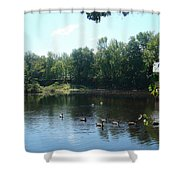 Ducks On The River Shower Curtain