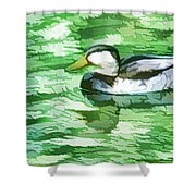 Ducks Swimming In A Pond Shower Curtain