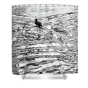 Ducks Swirl Shower Curtain