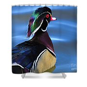 Ducktail Soup Shower Curtain