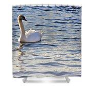 Duddingston Swan 1 Shower Curtain