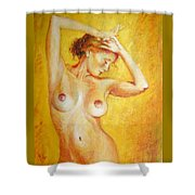 Due South Shower Curtain