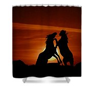 Duel At Sundown Shower Curtain
