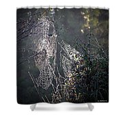 Dueling Webs Shower Curtain