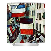 Dufy: Flags, 1906 Shower Curtain