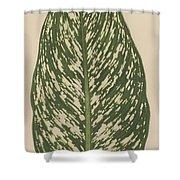 Dumbcane Shower Curtain