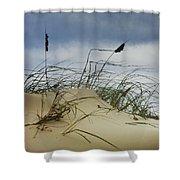 Dune And Beach Grass Shower Curtain
