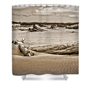 Dune Country Shower Curtain