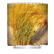 Dune Grass II  - Jersey Shore Shower Curtain by Angie Tirado