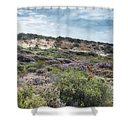 Dune Plants As Erica And Beautiful Sky Shower Curtain