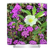 Dune Primrose Oenothera Deltoides And Purple Sand Verbena Shower Curtain