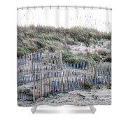 Dune Walk Shower Curtain