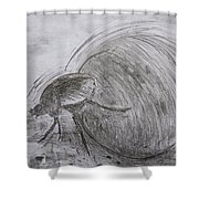 Dung Beetle Shower Curtain