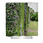 Dungeness Ivy Wall Shower Curtain