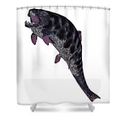 Dunkleosteus Fish On White Shower Curtain