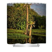 Dunlawton Pond Shower Curtain