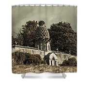 Dunmore Pineapple. Vintage  Shower Curtain