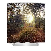 Dunmore Wood - Autumnal Morning Shower Curtain