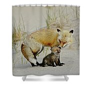 Dunr Fox Father And Child Shower Curtain