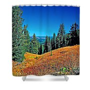 Dunraven Pass Shower Curtain