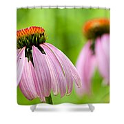 Duplication Shower Curtain