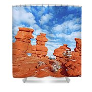 Durga, The Indian Mother Goddess Of The Universe   Shower Curtain