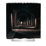 Durrow Tunnel Shower Curtain