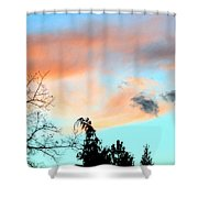 Dusk And Dogs Shower Curtain