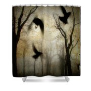 Dusk Begins As The Crows Fly Shower Curtain