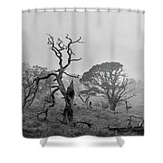 Dusk, Crannoch Woods Shower Curtain
