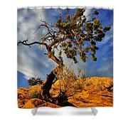 Dusk Dance Shower Curtain by Skip Hunt