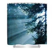 Dusk In Ashenvale Shower Curtain