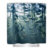 Dusk In Ashenvale IIi Shower Curtain