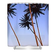 Dusk In Morro Shower Curtain