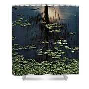 Dusk In The Swamp Shower Curtain