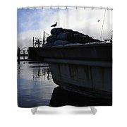 Dusk Seagull 2386 Shower Curtain