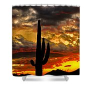 Dusk To Dawn Shower Curtain